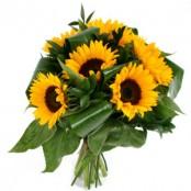 Just Sunflowers!